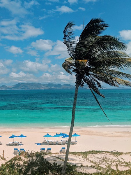 cuisinart view from room anguilla.jpg