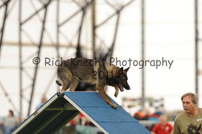 Berks County Dog Training Club AKC Agility Trial September 2-4