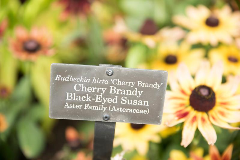 Chicago Botanic Garden 015.jpg