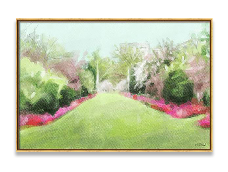Azaleas & Cherry Blossoms Brooklyn Botanic Garden Painting Framed Canvas Print by Beverly Brown