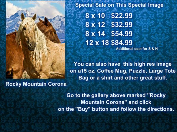 Corona Sale Board