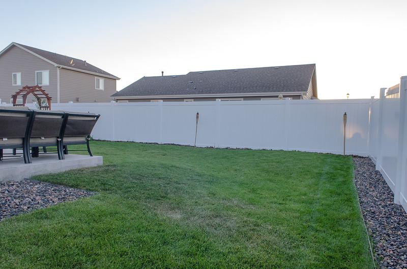 Backyard (5).jpg