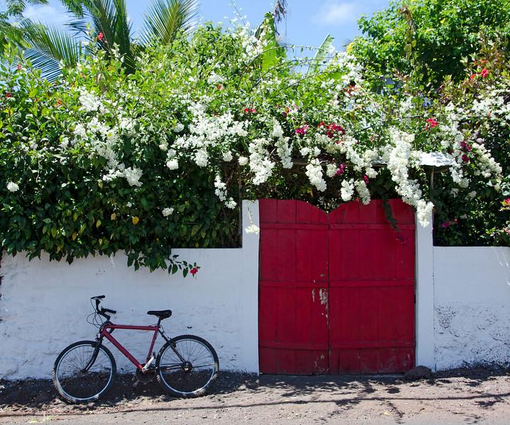 Galapagos-6.jpg