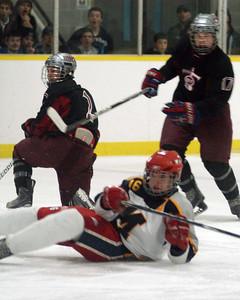 SMS Sr Hockey Playoffs 2011-2012