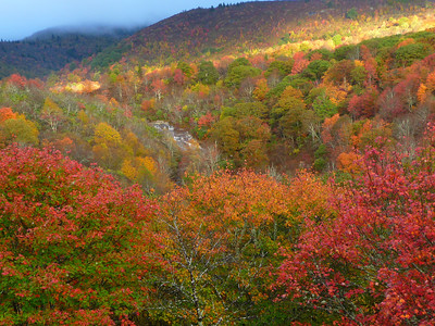 Autumn Scenes from Black Balsam to Devils Courthouse