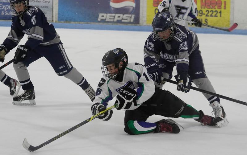 JPM147-Flyers-vs-Rampage-9-26-15.jpg