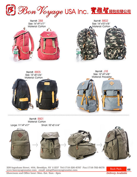 BackPack p66-X2.jpg