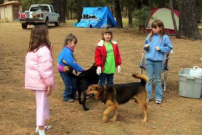 Reynolds Creek-Oct. '05-Comanche
