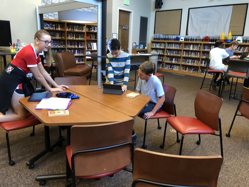 2018_08_31_Library7thGooseChase.jpg