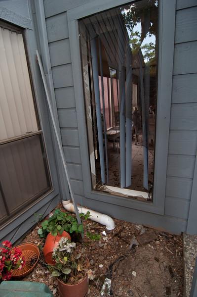Subirats Home Deer damage-3979.jpg
