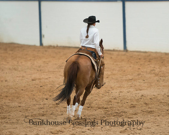 Panhandle Reined Cow Horse Association
