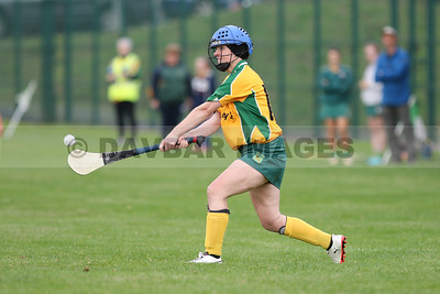 Donard/Glen Senior Camogie Championship Final 2018