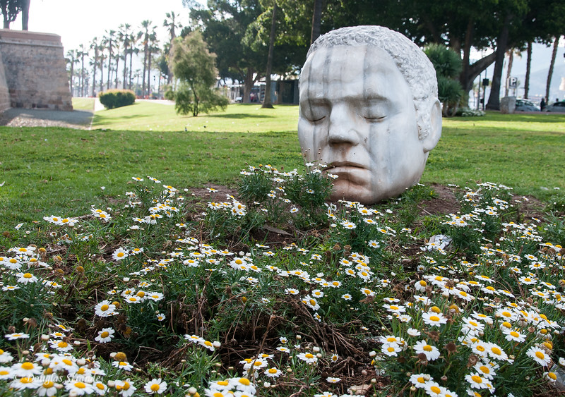 Cartagena, Spain - Pushing up daisies