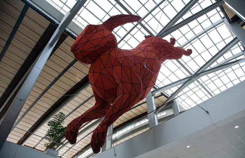 red_rabbit.jpg