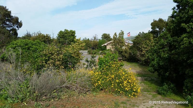 San Onofre State Park - San Mateo Loop Spring 2015