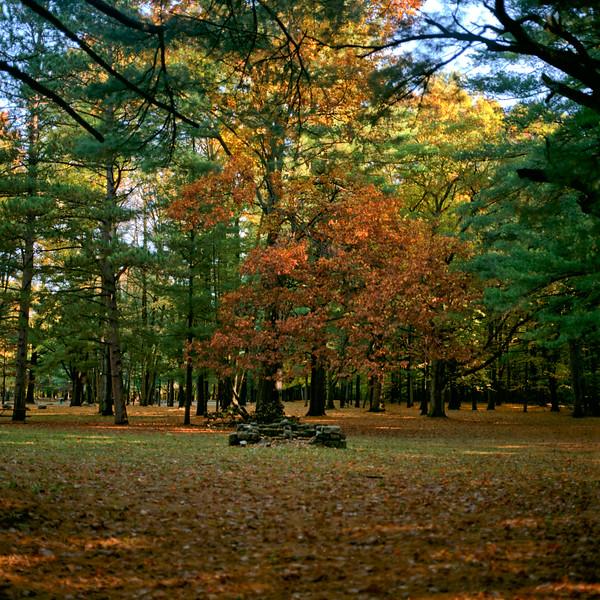 Autumn Hike 120 Film-00060.jpg