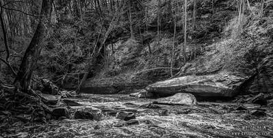 Fall Stream - Photography by Wayne Heim