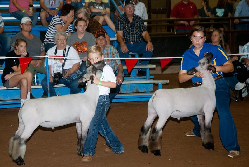 ok_state_fair_20190914_lambs-4.jpg