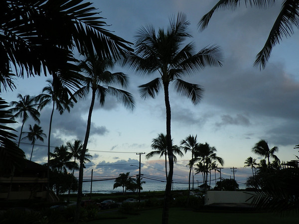 Hawaii Oh Yeah!