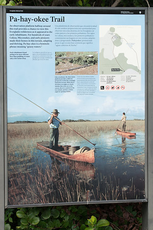 03_Everglades - Shark Valley - Uncategorized