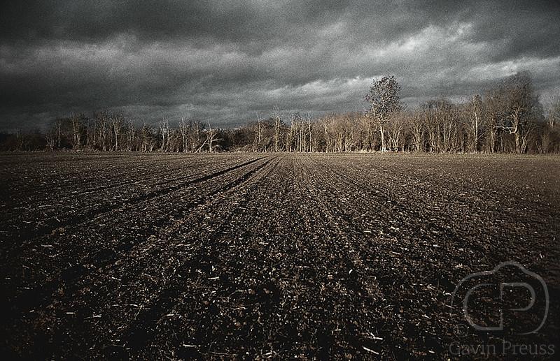 Eyensham_Field.jpg