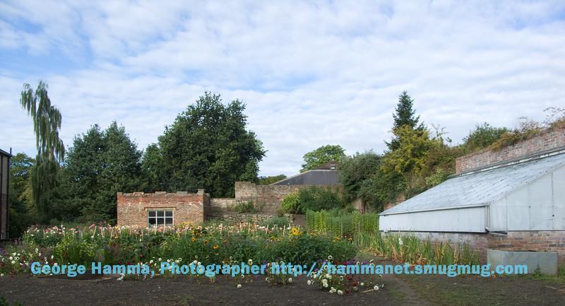 Garden in Durham