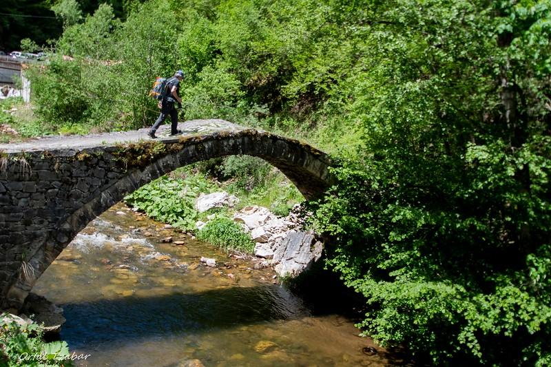עמיר עם תרמיל על הגב על הגשר.jpg