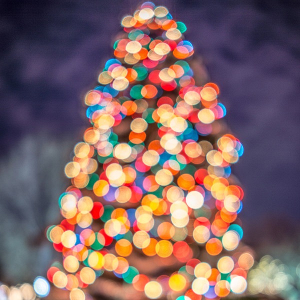 01255 AH Christmas Tree nofocus.jpg