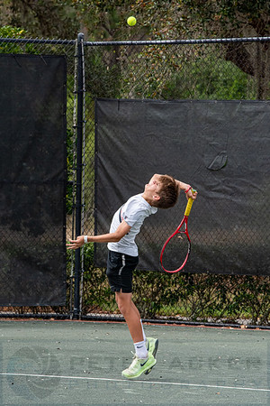 Harrison Tennis
