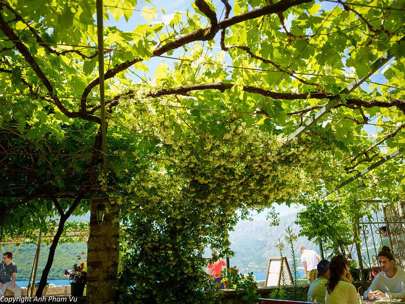 Uploaded - Montenegro May 2013 014.jpg