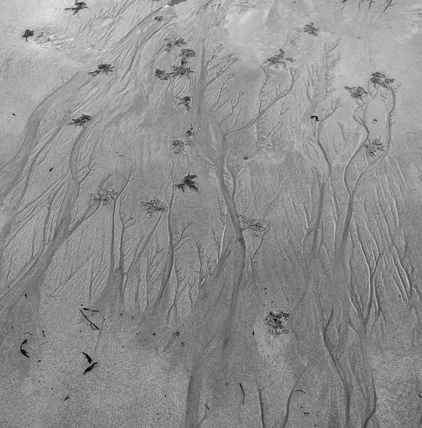 Patterns in sand 2.jpg