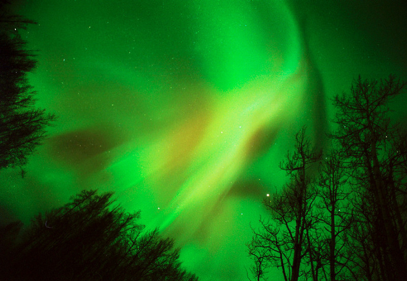 . Aurora Borealis, also known as the Northern Lights, illuminate the sky above the Cripple Creek area southwest of Fairbanks, Alaska shortly before midnight Tuesday night, Feb. 5, 2002. (AP Photo/Fairbanks Daily News-Miner, Eric Engman)