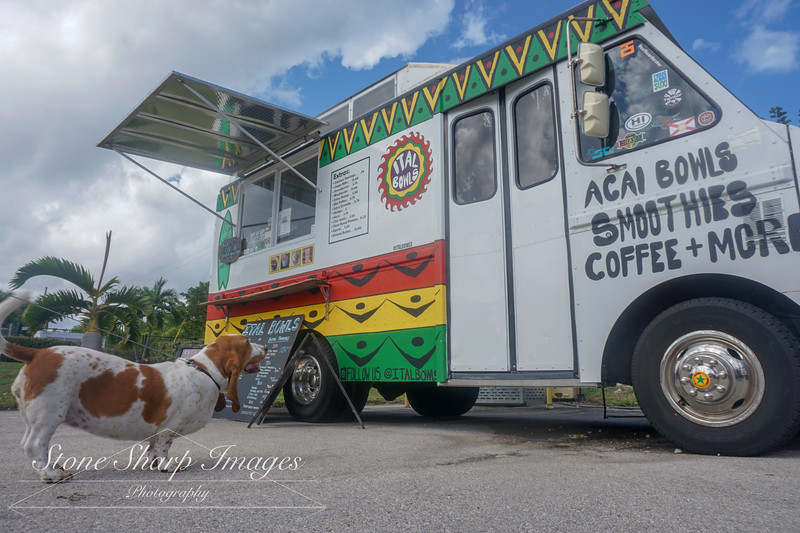 Ital Food Truck ( MY BOY! )
