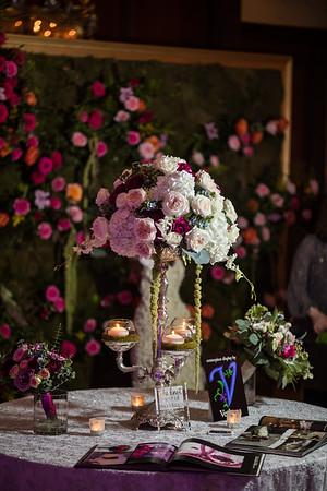 Showcase Verbina Flowers- INHP