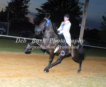 CLASS 30  PONY AMATEUR 18 YRS & UP SPECIALTY