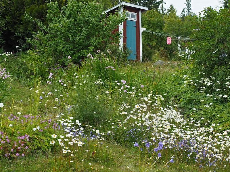 Bönhamn 19-07-17 (2).jpg