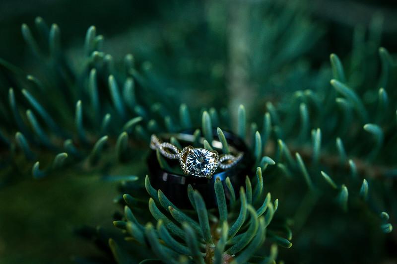 Corinne Howlett Wedding Photo-590.jpg
