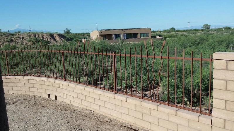Fencing on wall w- ocotillo - brooks.jpg