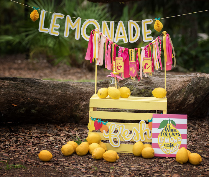 lemonade smash set up.jpg
