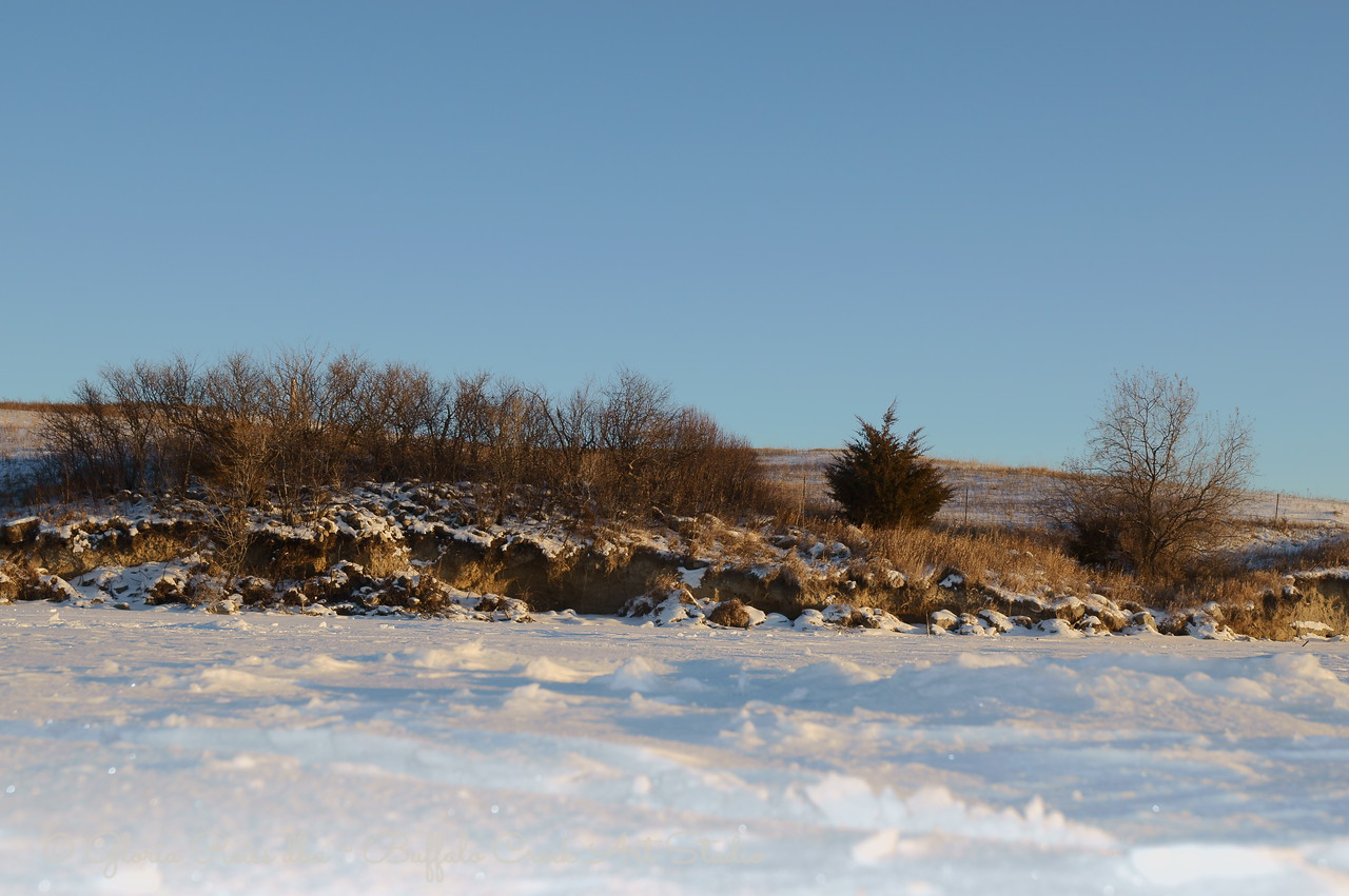 snowy lake shore and fruit thicket