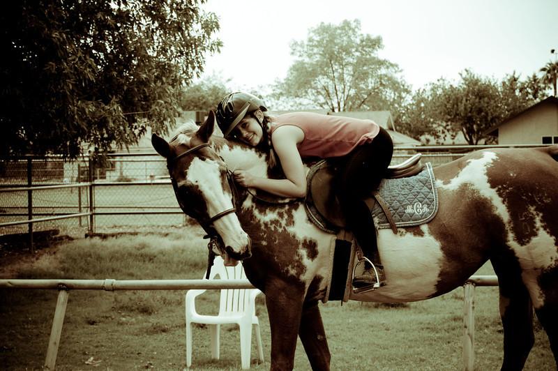 horsieeeee 1.jpg