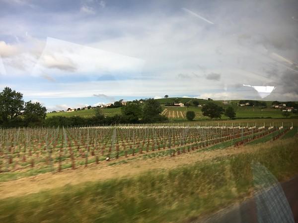 Beaujolais & Taste of Lyon