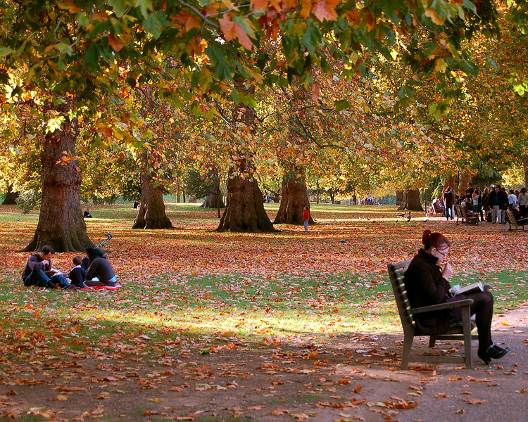 St. James's Park in Autum