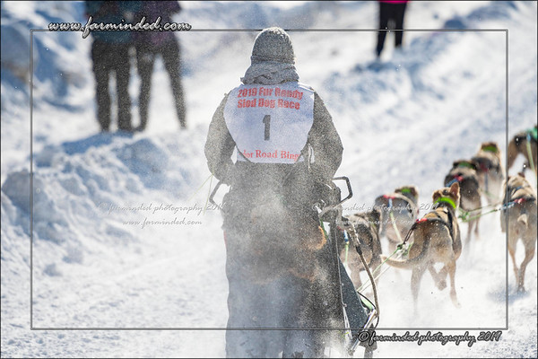 World Championship Dog Sled Race - Day