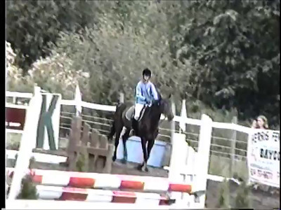 Old Horse Clips
