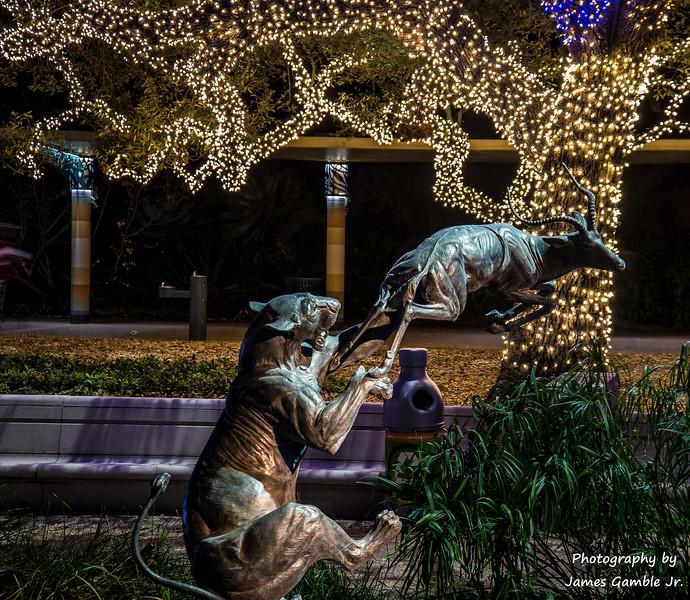 Houston-Zoo-Lights-2916.jpg