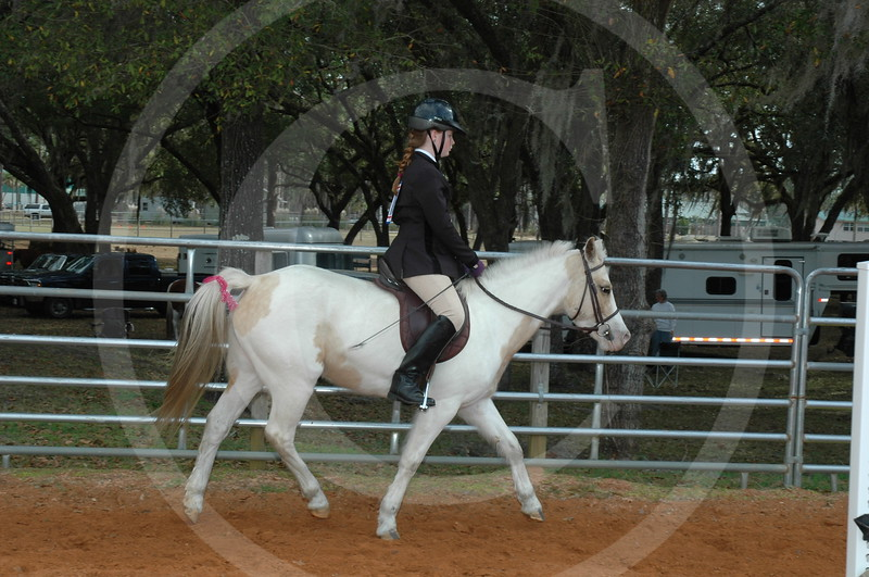 Perry Horse Show