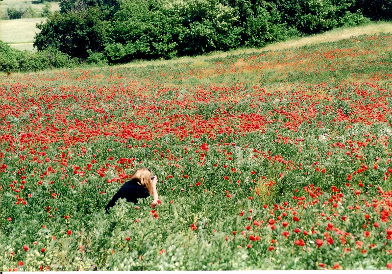 LindaOBPhotgywithPoppies copy.jpg