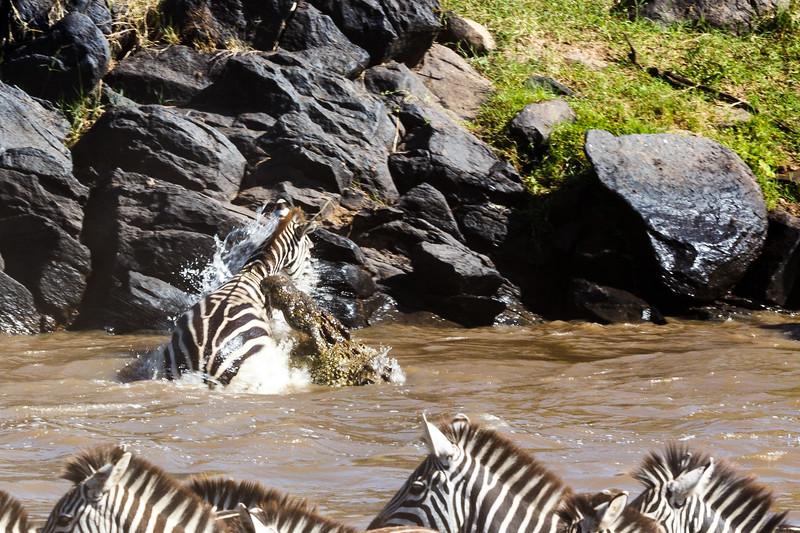 Kenya 2015-02679.jpg
