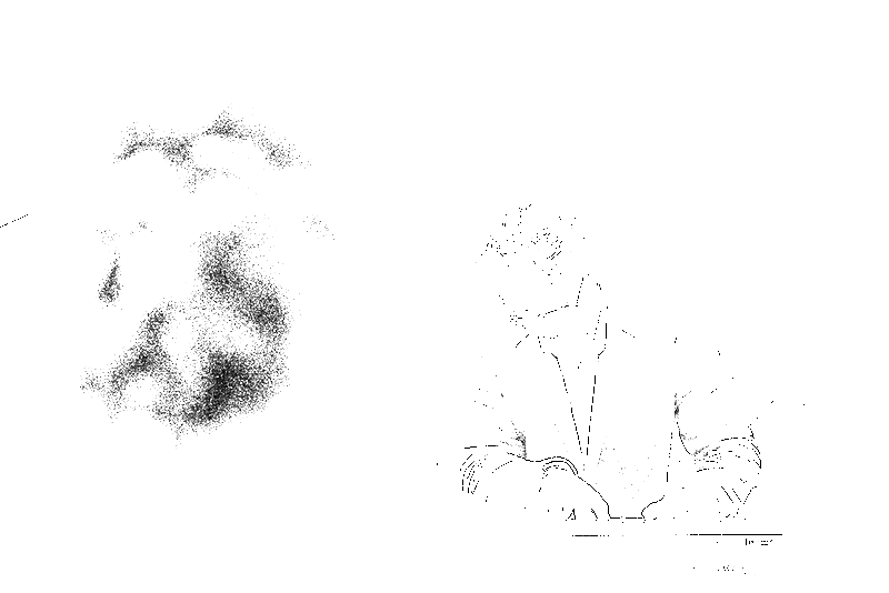DSC05829.png